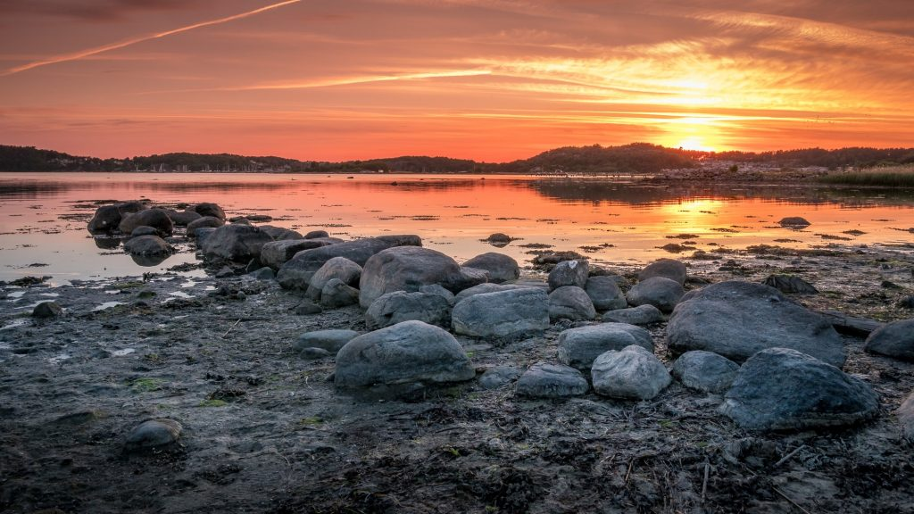 Kustremsa nära Göteborg, Sverige